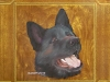 Akita pet portrait oils on ceramic by zamudio