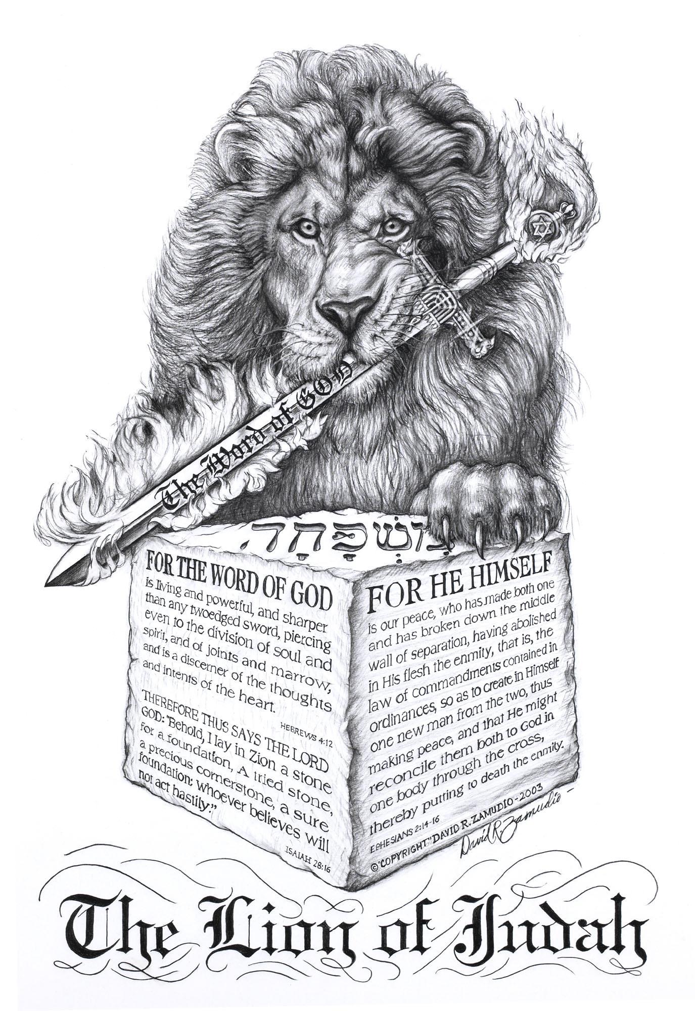 Lion poster prints