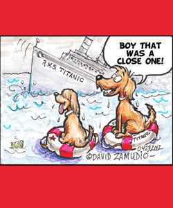 Cartoon 2 Dogs Survive Sinking of Titanic by David Zamudio